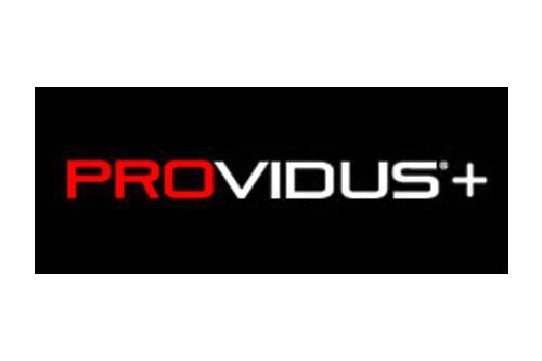 PROVIDUS+